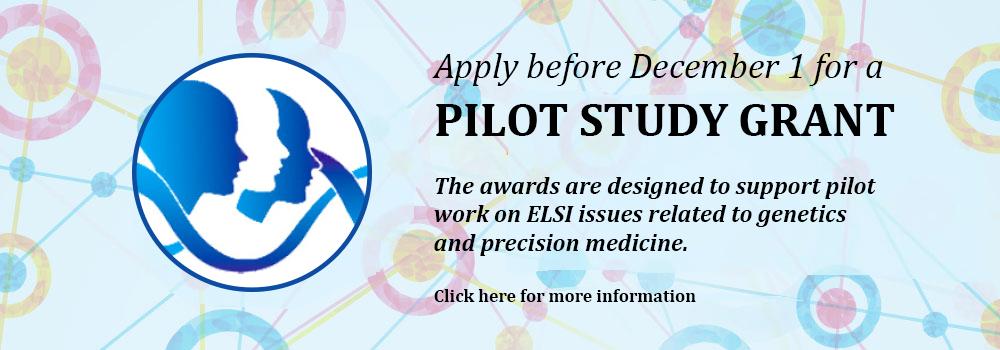 Pilot Grant Program